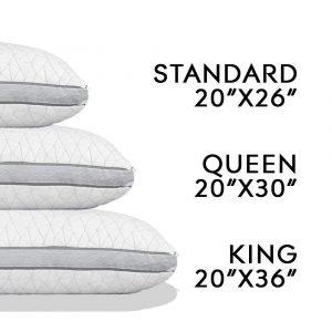 Coop Home Goods Eden Pillow 1 300x300 image