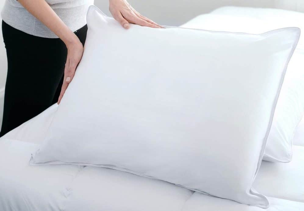 Sealy-Posturepedic-Soft-Down-Stomach-Sleepers-Standard-Size-Pillow-ec036595-3af4-4ccc-92b6-7fb72077f54a