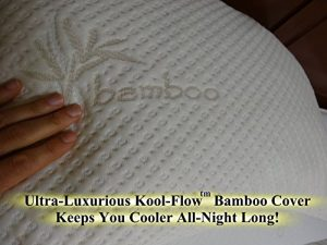 Snuggle Pedic Ultra Luxury Bamboo Shredded Memory Foam Pillow 2 300x225 image