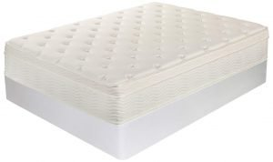Zinus Night Therapy Spring Deluxe Euro Box Top Mattress 1 300x178 image