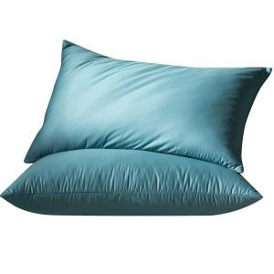 Globon Luxurious White Goose Feather and Down Bed Pillows