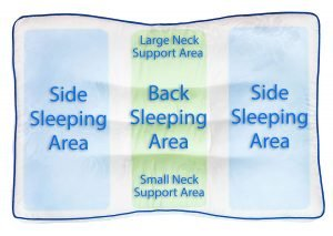 Nature's Guest Support Pillow-1