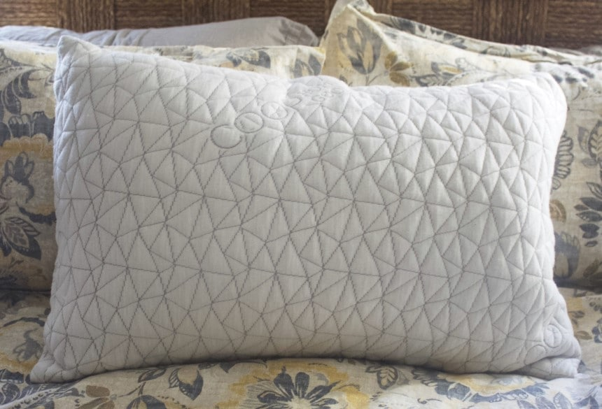 Coop Pillows Review