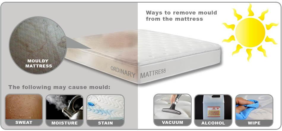 Mold on Mattress: How to Avoid It and What to Do with It if You Have It?