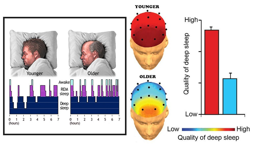 Stages of Sleep: Their Number and Effect