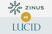 Zinus vs LUCID: Which Is Better for You?