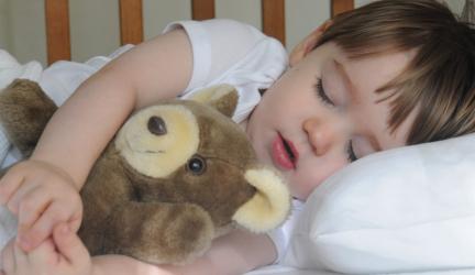 best toddler pillow 3 1unifp8dni6beeq55w0h9gdy9c4gbbt17j940sjdem7o image