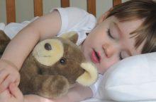 best toddler pillow 3 nztodej8rbw9topj3mn6ow98j7xoawoygimt3g3qga image